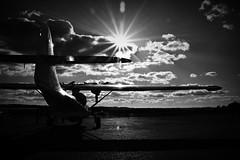 Cat in the sun. (Steve.T.) Tags: duxford iwmduxford blackandwhite bnw sun sunburst silhouette nikon d7200 catalina pbycatalina seaplane iconicaircraft avgeek aviation militaryaviation aviationphotography cambridgeshire aeroplane aircraft mono