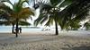 Playa Boca Chica (jcgphotos12) Tags: 2010 beach beachviews bocachica citiesplaceslocation dominicanrepublicrepublicadominicana goldenhours july nikonafsnikkor1635mmf40gedvr nikond700 palmtrees photocamera photography scenicviiews year
