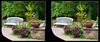 Longwood Gardens Walk 2 - Crosseye 3D (DarkOnus) Tags: pennsylvania buckscounty panasonic lumix dmcfz35 3d stereogram stereography stereo darkonus longwood gardens walk bench park scenic scenery path hyper hyperstereo ttw crossview crosseye