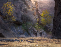 Hiking the Narrows (Charlotte Hamilton Gibb) Tags: utah zion zionnationalpark canyon narrows fall autumn hikers walkingsticks river light mist