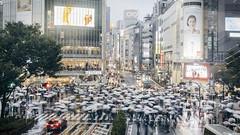 渋谷 (リンドン) Tags: 渋谷 東京 日本 ニコン シグマ 雨 交差点 傘 nikon tamron 35mm 18 vc tokyo shibuya crossing rain umbrella brolly people night evening streetphotography happyplanet asiafavorites