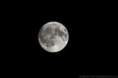 2017-10-04 Moon Phase: Waxing Gibbous  98% Visible (1024x680) (-jon) Tags: anacortes skagitcounty skagit washingtonstate washington salishsea fidalgoisland sanjuanislands pugetsound pnw pacificnorthwest pacific northwest moon waxinggibbous fullmoon luna lunar a266122photographyproduction harvestmoon