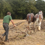 The Ploughing Match thumbnail