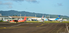 Caribbean Airport 🌴☀️ (Maxime C-M ✈) Tags: tropical martinique airplane spotting photography fun passion nikon afternoon antilles colors beautiful french explore discover earth world grass boeing airbus cessna a350 a320 b77w