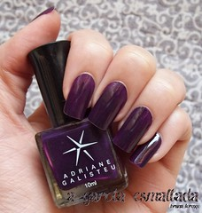 Esmalte  14 - Desert Queen, da Adriane Galisteu (Top Beauty). (A Garota Esmaltada) Tags: agarotaesmaltada unhas esmaltes nails nailpolish manicure 14desertqueen adrianegalisteu topbeauty roxo purple