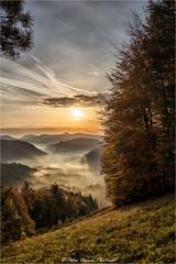 Talblick (Peter Daum 69) Tags: tal landscape natur nature licht light strahlen ray sonne sun sonnenaufgang sonnenuntergang sunset sunrise canon eos nebel fog farbe color dunst wolken clouds
