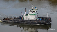 DSC01783 (Sergey Udalov) Tags: nature природа outdoor landscape ландшафт water вода river riverbed река ока oka русло ship корабль jupiter37a юпитер37а 135мм f35