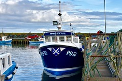 PD12 Hopeful - Boddam Harbour Peterhead Aberdeenshire 2017 (DanoAberdeen) Tags: boddamharbour buchanhaven buchan pd12 boddam pd12hopeful danoaberdeen dano danophotography candid amateur 2017 recent aberdeen harbour grampian nikon nikkor nikond750 scotland scottishhighlands geotagged seafarers northeastscotland psv wss shipspotters aberdeenshire tugboat shipspotting boats vessels tug autumn winter spring summer ecosse scotia schotland escotia peterhead nimbus clouds bluesky
