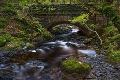 Eddies and Whirlpools (John Joslin) Tags: cumbria lakedistrict rocks stone bridge long exposure trees pools ferns england river leaves moss autumn loxia2821