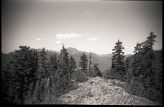 on top of suicide bluffs (Beaulawrence) Tags: film grain analog filmphotography homedeveloped selfdeveloped homedarkroom diy c41blackwhite vivitar leclick cheapcamera plasticcamera plasticlens plasticfantastic lomography vintage northshore vancouver northvancouver mtseymour suicidebluffs mountain view britishcolumbia bc canada westcoast vignetting