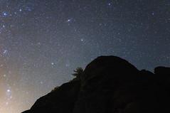 Countless Stars (idmccann) Tags: nature night astrophotography universe galaxy sky stars andromeda starlight staraplanina balkanmountain rocks belogradchikrocks tree silhouette canoneos600d longexposure imagestacking ilyandeclanmccann astrometrydotnet:id=nova2285084 astrometrydotnet:status=solved