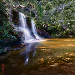 Wentworth Falls (Bill Thoo) Tags: wentworthfalls bluemountains nsw newsouthwales australia waterfall cascade bush trees water reflection landscape scenic travel rural country sony a7rii ilce7rm2 zeiss batis 18mm