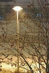 IMG_0002 (www.ilkkajukarainen.fi) Tags: espoo suomi suomi100 eu europa scandinavia visit happy life myrsky storm tuuli windy vist winter lumisade lumimyrsky valo light talvi lumi