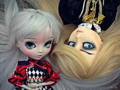 Bell e Battler (♪Bell♫) Tags: taeyang albireo pullip optical alice battler garth weiss isabella carolina custom eyechips doll groove