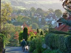 An Autumn Walk (Martellotower) Tags: walk briggswath autumn dog village