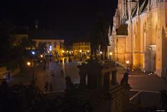 15062014 (Xeraphin) Tags: hungary budapest mátyás templom matthias church szentháromság tér catholic buda gothic schulek magyarország budɒpɛʃt unescoworldheritagesite trinity square
