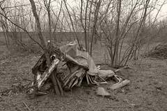 _MG_8363 (daniel.p.dezso) Tags: kiskunlacháza kiskunlacházi elhagyatott orosz szoviet laktanya abandoned russian soviet barrack urbex ruin vehicle