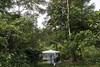 Programa de Erradicação da Oncocercose nas Américas - Terras Yanomami (Secretaria Especial de Saúde Indígena (Sesai)) Tags: outubro 2017 oncocercose erradicação dseiyanomami indígenas coleta insetos entomologia polóbasexitei yanomami roraima