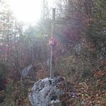 Cross @ Forest @ Path from Col de la Buffaz to Refuge de la Têtaz @ Hike to Circuit de l'Ovine & Pointe de la Québlette thumbnail
