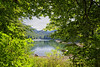 Biogradska Gora Lake (Alfred Grupstra) Tags: nature lake water landscape tree outdoors forest scenics summer reflection beautyinnature sky greencolor blue tranquilscene mountain river nopeople travel sunlight 999 montenegro biogradskagoralake