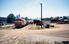 2629 XB1017 Jarrahwood 16 December 1981 (RailWA) Tags: railwa philmelling westrail 1981 xb1017 jarrahwood