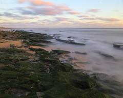 _MG_0235 5x4 47sec f13 w (grilee3) Tags: marineland florida beach surf dawn sunrise coquina long exposure rock algae