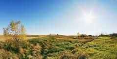 October Landscape (Dave Linscheid) Tags: landscape country agriculture farm rural sun sunburst cornstubble harvest autumn fall watonwancounty mn usa toolwizphotos