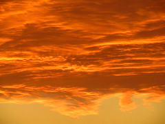 Orange Sky (1-11-17) (Gary Chatterton 4 million Views) Tags: sunset orange sky sun evening light weather solar selby northyorkshire unitedkingdom flickr explore photography amateur canonpowershot