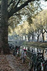 bike@Kö, Düsseldorf 10 (Amselchen) Tags: bicycle kö düsseldorf trees reflection light season autumn autumncolours bokeh blur dof depthoffield fujifilm fujifilmxseries fujinon xt2 fujifilmxt2 xf35mmf14r city