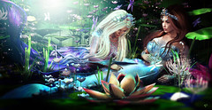 Mersouls (meriluu17) Tags: mermaid mermaids merfolk soul fin tail scales fairies fairy fantasy surreal people couple pond lotos lilly water flower flowers aqua teal blue cynefin light