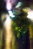 20170902-019 (sulamith.sallmann) Tags: blur door effect effekt filter folie folientechnik licht lichter light nacht nachtaufnahme nachts night nightshot tür unscharf berlin deutschland deu sulamithsallmann