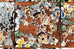 Campo minato / Prato fiorito (S. Hemiolia) Tags: ischia maiolica ceramica pavimento piastrelle santamariavisitapoveri zeiss old rovinato fiori flowers manualfocus 6d forio contax yashica