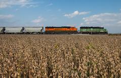 Failure in the Farmlands (Jake Branson) Tags: train railroad bnsf bn burlington northern gp50 sd75i emd hannibal subdivision west alton mo missouri