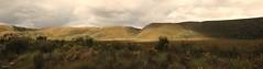 Professor Plateau (taszee63) Tags: tasmania panorama plateau professor green
