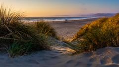 The Beach is Calling (lisastein92) Tags: california sea ocean sunset beach water grasses golden light canon sand landscape seascape sky mountain grass morro bay morrobay