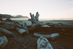 Washington (Gabe Scalise) Tags: 35mm film analog gabe scalise washington coast beach olympic national park nikon f3 hp f3hp portra 400