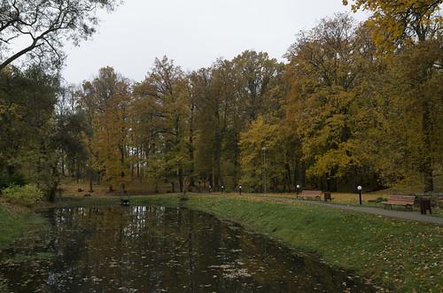 Kokneses parks, 17.10.2017.