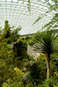 DSC_9364 (durr-architect) Tags: norman foster design glasshouse national botanic garden wales panels glass steel structural ribs flowers arch water pond trees modern architecture