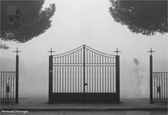 Halloween 2017 (Manuel Moraga) Tags: manuelmoraga halloween 2017 ánima fantasma niebla blancoynegro madrid españa