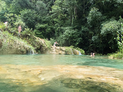 P8241274_LR (CharlieBro) Tags: 2017 centroamerica guatemala lanquin semucchampey acqua natura nature pool pools swimming water