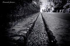 Agua de la Alhambra (alanchanflor) Tags: canon alhambra granada andalucía españa agua mazarí perspectiva profundidaddecampo