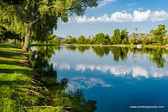 Morning on the lake in Arizona (doveoggi) Tags: 8770 arizona scottsdale greenbelt city reflection clouds trees