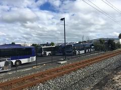 NZBus Onehunga Depot (CR1 Ford LTD) Tags: onehungabusdepot busdepot atmetrobuses nzbusonehungadepot man17223 atmetroman17223 buses bus omnibus publictransport onehunga