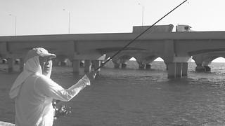 Fishing Trucks
