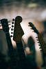 Hendrix Day (Francesco Tosi) Tags: hendrix day poviglio