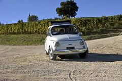 Fiat 500 in Chianti (Antonio Cinotti ) Tags: fiat500 abarth595 fiat 500 landscape paesaggio dievole vagliagli toscana tuscany italy italia siena vineyards chianti chianticlassico vigneti campagnatoscana nikond7100 nikon d7100