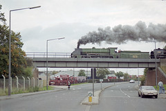 828 + 70000 at Eastleigh, 10 Oct 1993 (Ian D Nolan) Tags: railway railtour 35mm epsonperfectionv750scanner 828 460z s15 sr lswr