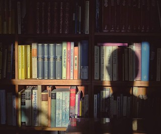 in the house of the antiquary, woke up in a room with books