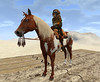 Hot Tin Roof15-Drifter (grady.echegaray) Tags: thewastelands postapocalyptic desert sanddunes tinroof slfashion slstyle secondlife avatar