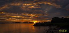 Reflection (melvhsc100) Tags: sunrise scenery sky cloud colour seascape island reflection longexposure light singapore nikond3100 pasir ris park